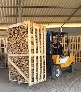 עופר מעמיס עצים להסקה